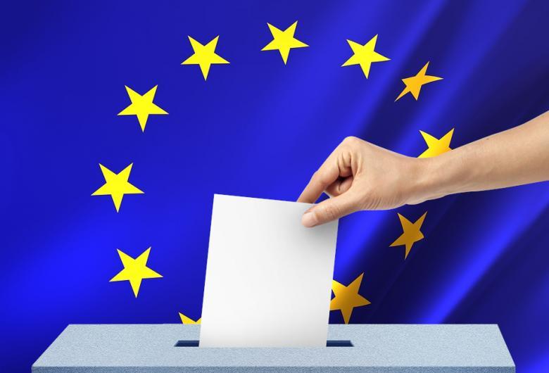 La Călărași, PNL este câștigătorul alegerilor europarlamentare
